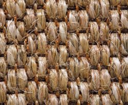 Sisal Tatty Tweed